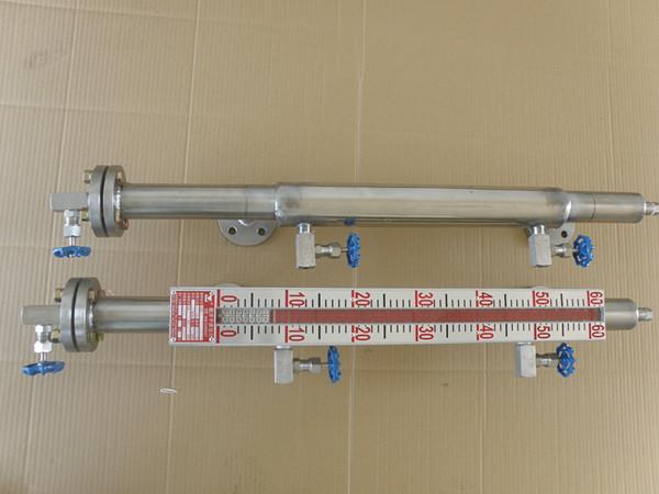 蒸汽伴热液位计